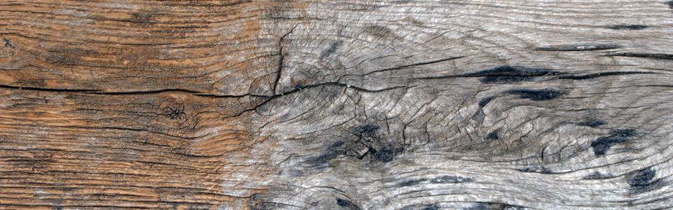 Limpieza estructuras y casas de maderas